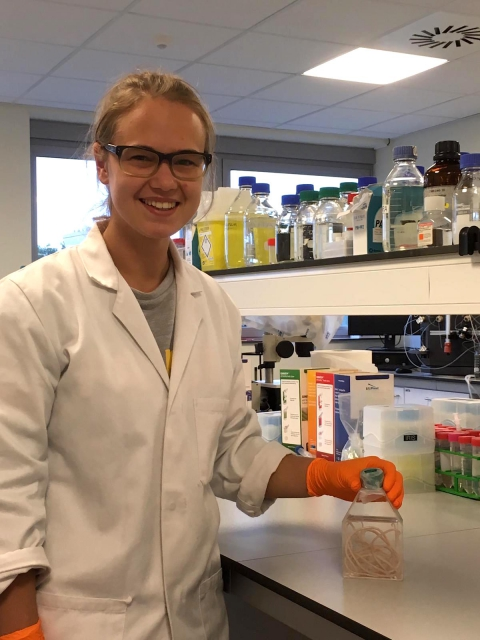 Starworms student wins prize for best Msc thesis.